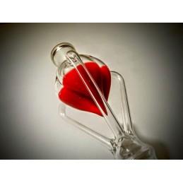 Heart -  Labo Custom